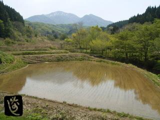 onigiri01.jpg